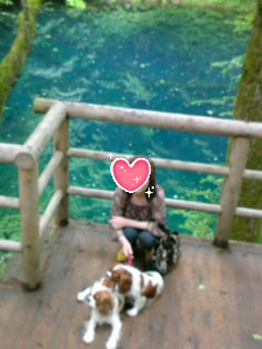 青森の十二湖にて